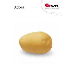 "KROMPIR ADORA ""A"" 28/35  2,5 KG - AGROLIT"
